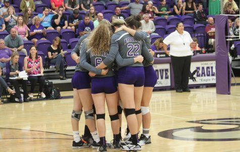 Fair Grove Volleyball Swinging into Districts