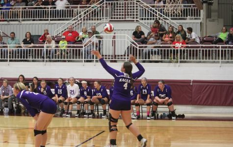 Proving the Predictions Wrong, Volleyball Finishes Strong