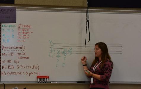 Mrs. Palomo teaches Music  Theory/Appreciation