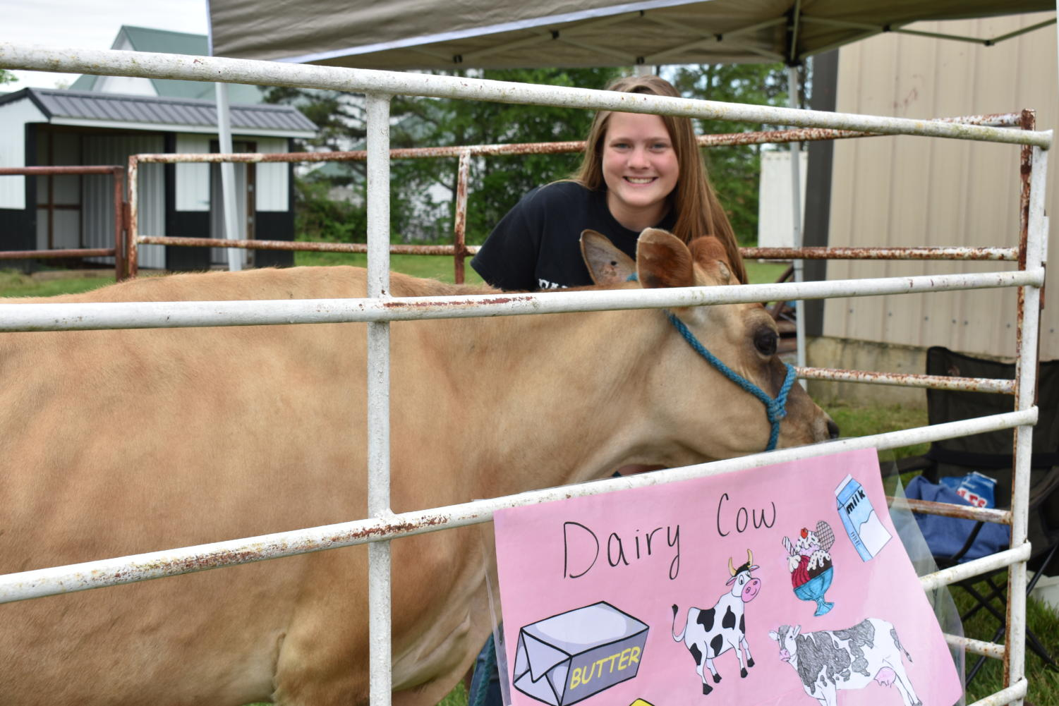 Bailey Richardson (10) poses with her dairy cow.